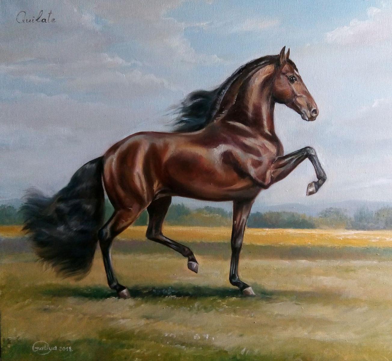 Vendita cavalli vendita cavalli vendita cavalli for Quanto costa mantenere un cavallo